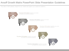 Ansoff Growth Matrix Powerpoint Slide Presentation Guidelines