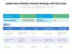 Application Stability Analysis Strategy With Test Case Ppt PowerPoint Presentation File Styles PDF