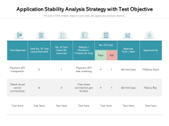 Application Stability Analysis Strategy With Test Objective Ppt PowerPoint Presentation Icon Example PDF