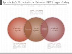 Approach Of Organizational Behavior Ppt Images Gallery