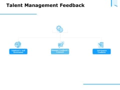 Approaches Talent Management Workplace Talent Management Feedback Summary PDF