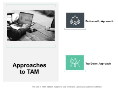 Approaches To Tam Server Ppt PowerPoint Presentation Professional Icon