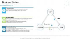 Architecture Blockchain System Blockchain Variants Ppt Professional Portfolio PDF
