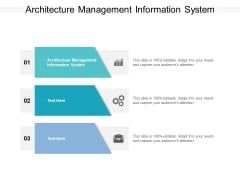 Architecture Management Information System Ppt PowerPoint Presentation Styles Icon Cpb Pdf