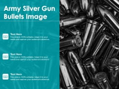 Army Silver Gun Bullets Image Ppt PowerPoint Presentation Outline Information PDF