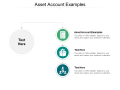 Asset Account Examples Ppt PowerPoint Presentation Slides Tips Cpb