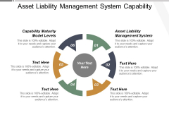 Asset Liability Management System Capability Maturity Model Levels Ppt PowerPoint Presentation Summary Microsoft