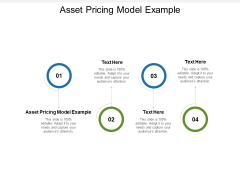Asset Pricing Model Example Ppt PowerPoint Presentation Pictures Vector Cpb Pdf