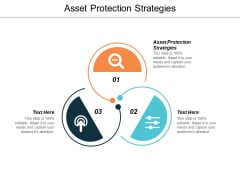 Asset Protection Strategies Ppt PowerPoint Presentation Icon Designs Cpb