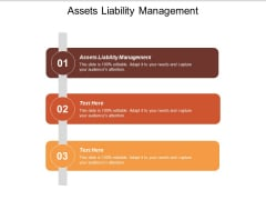 Assets Liability Management Ppt PowerPoint Presentation Show Visuals