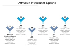 Attractive Investment Options Ppt PowerPoint Presentation Templates Cpb Pdf