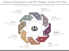 Attribute Of Experience Level Ppt Diagram Sample Ppt Files