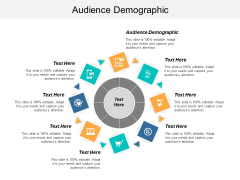 Audience Demographic Ppt PowerPoint Presentation Infographic Template Designs Cpb