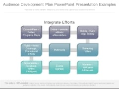 Audience Development Plan Powerpoint Presentation Examples