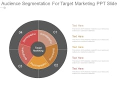 Audience Segmentation For Target Marketing Ppt Slide