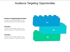 Audience Targeting Opportunities Ppt PowerPoint Presentation Styles Clipart Cpb