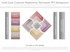 Audit Cycle Customer Relationship Techniques Ppt Background