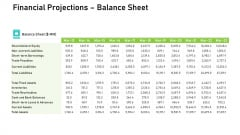 Audit For Financial Investment Financial Projections Balance Sheet Portrait PDF