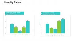 Audit For Financial Investment Liquidity Ratios Professional PDF