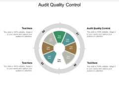 Audit Quality Control Ppt PowerPoint Presentation Show Infographic Template Cpb