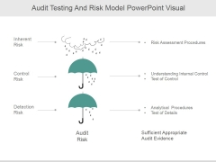Audit Testing And Risk Model Ppt PowerPoint Presentation Microsoft