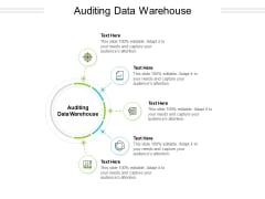 Auditing Data Warehouse Ppt PowerPoint Presentation Show Clipart Images Cpb Pdf