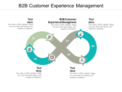 B2B Customer Experience Management Ppt PowerPoint Presentation Infographic Template Slides Cpb