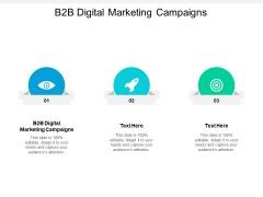 B2B Digital Marketing Campaigns Ppt PowerPoint Presentation Ideas Background Cpb