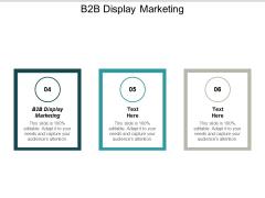 B2B Display Marketing Ppt PowerPoint Presentation Styles Ideas Cpb