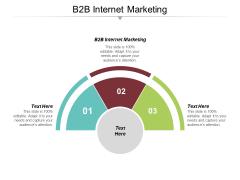B2B Internet Marketing Ppt PowerPoint Presentation Icon Files Cpb