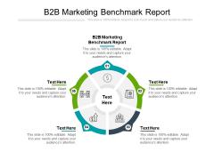 B2B Marketing Benchmark Report Ppt PowerPoint Presentation Styles Ideas Cpb