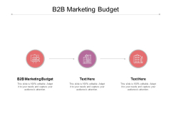 B2B Marketing Budget Ppt PowerPoint Presentation Icon Gallery Cpb