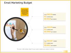 B2B Marketing Email Marketing Budget Ppt File Microsoft PDF