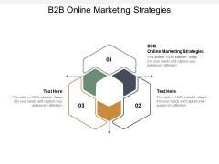 B2B Online Marketing Strategies Ppt PowerPoint Presentation Ideas Layouts Cpb