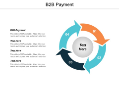 B2B Payment Ppt PowerPoint Presentation Styles Icon Cpb