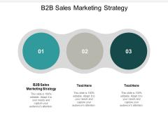 B2B Sales Marketing Strategy Ppt PowerPoint Presentation Infographics Portfolio Cpb