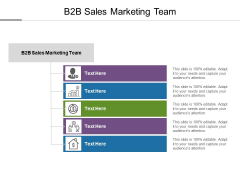 B2B Sales Marketing Team Ppt PowerPoint Presentation Model Clipart Images Cpb