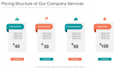 B2B Sales Procedure Counselling Pricing Structure Of Our Company Services Download PDF