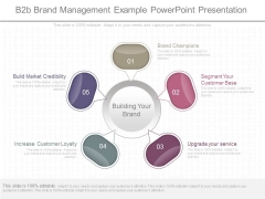 B2b Brand Management Example Powerpoint Presentation