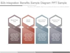 B2b Integration Benefits Sample Diagram Ppt Sample