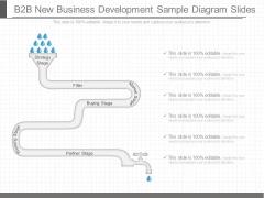 B2b New Business Development Sample Diagram Slides