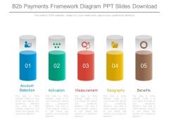 B2b Payments Framework Diagram Ppt Slides Download