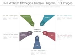 B2b Website Strategies Sample Diagram Ppt Images