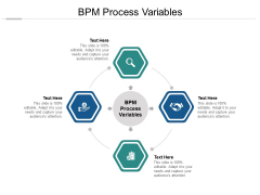 BPM Process Variables Ppt PowerPoint Presentation Gallery Portrait Cpb Pdf