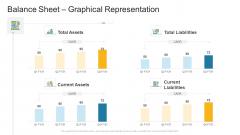 Balance Sheet Graphical Representation Company Profile Ppt Slides Show PDF