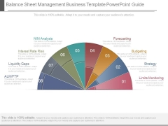 Balance Sheet Management Business Template Powerpoint Guide