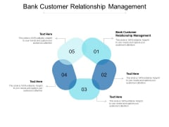 Bank Customer Relationship Management Ppt PowerPoint Presentation Layouts Template Cpb