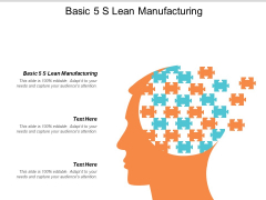 Basic 5 S Lean Manufacturing Ppt PowerPoint Presentation Model Introduction Cpb