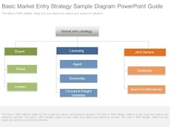 Basic Market Entry Strategy Sample Diagram Powerpoint Guide