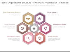 Basic Organization Structure Powerpoint Presentation Templates